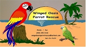 Winged Oasis Parrot Rescue - Colborne, ON