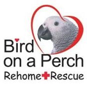 Bird on a Perch Rehome and Rescue - Port Hope, ON