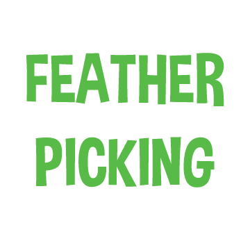 FEATHER PICKING