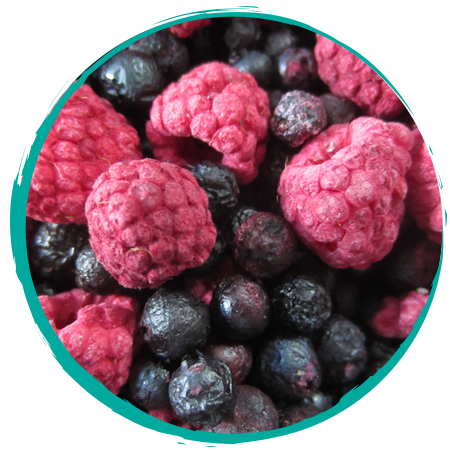 Tango's Freeze Dried Raspberries and Blueberries