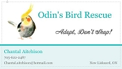 Odin's Bird Rescue -  New Liskeard, Ontario