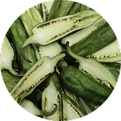 myParrotopia - Freeze Dried Jalapeno Peppers