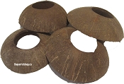 Coconut Discs Medium 5pk
