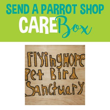 Flying Hope Pet Bird Sanctuary - Care Box