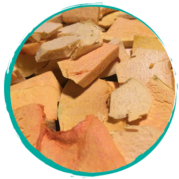 Tangos Freeze Dried Squash Medley